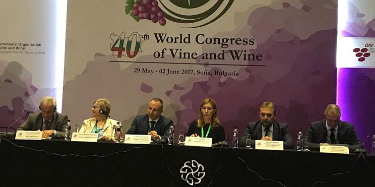 40 конгрес по винарство