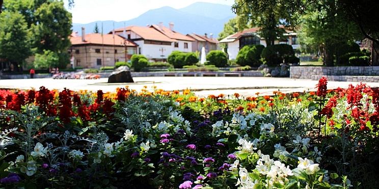 цветя в Банско