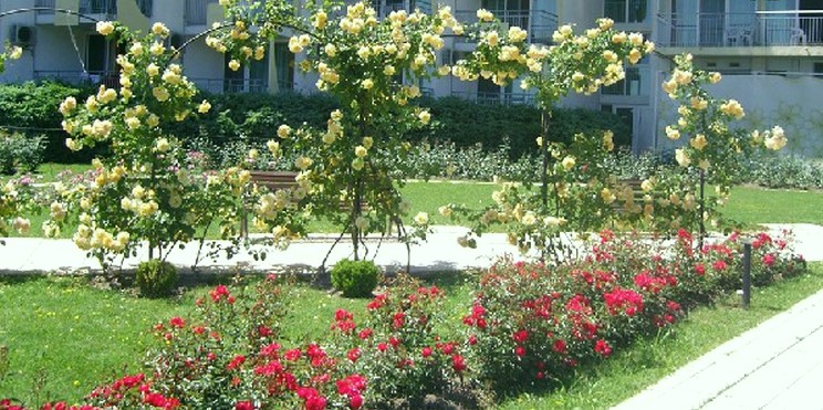 розариум в Албена