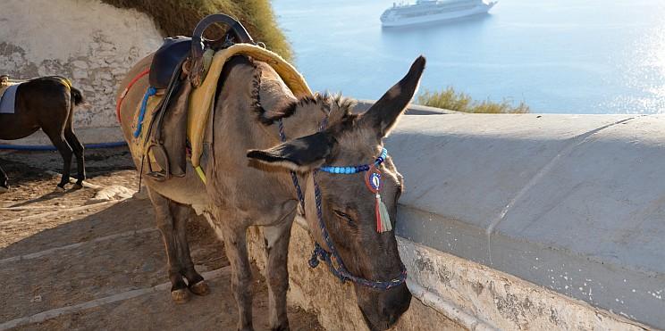 магаре на Санторини