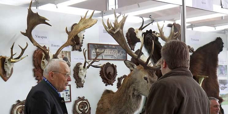 Природа лов и риболов